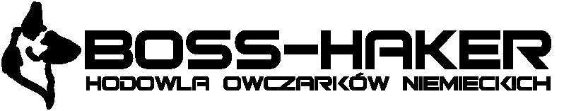 boss-haker.pl