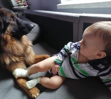 Dziecko i pies._1