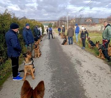 Socjalizowanie psów w terenie._1