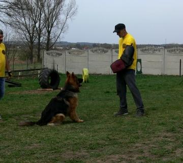 Szkolenie Odemona._2